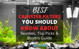 Best Canister Filter YOU Won't Believe Our #1 Top Pick