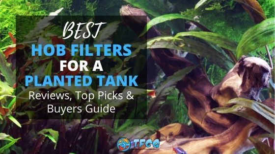 Best HOB Filters For A Planted Tank Reviews & Guide