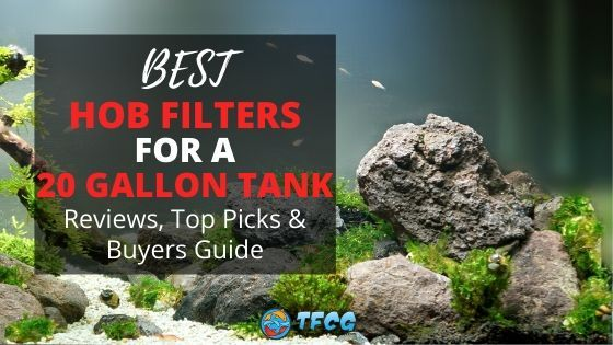 Hang On Back Filters For A 20 Gallon Tank