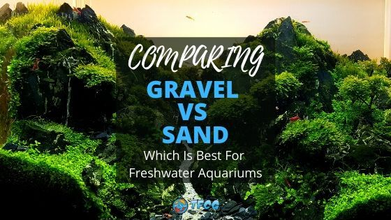Comparing Gravel To Sand For Freshwater Aquariums