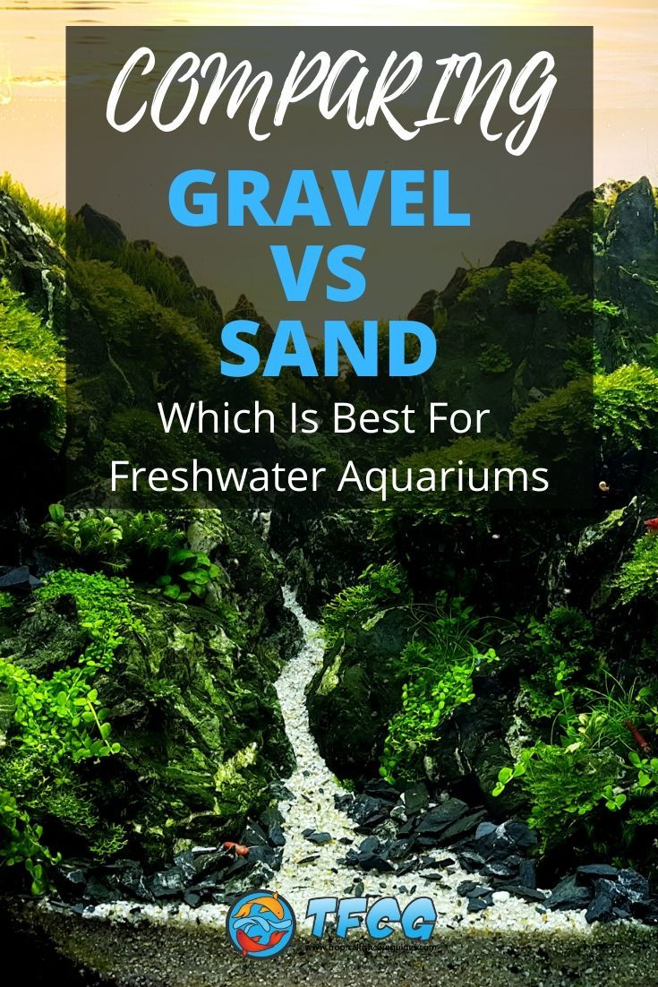 Comparing Gravel To Sand For Freshwater Tanks