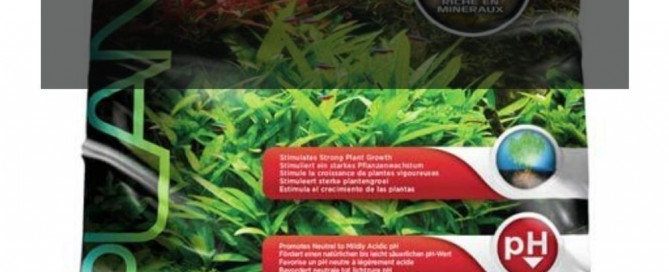 Fluval Stratum Review_ Is It a Good Substrate