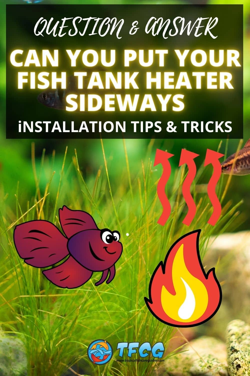 Can You Put Your Fish Tank Heater Sideways