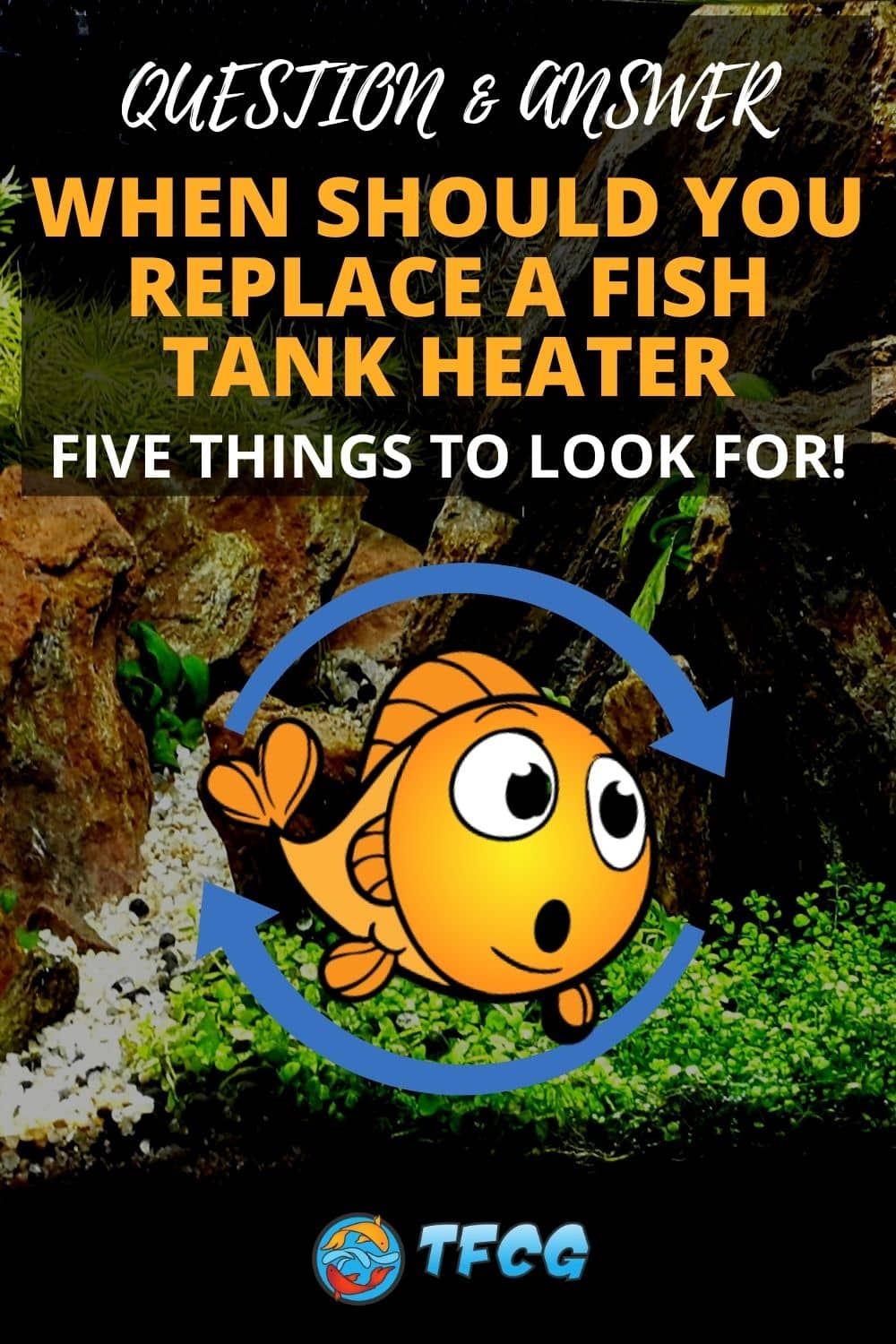 When Should You Replace A Fish Tank Heater
