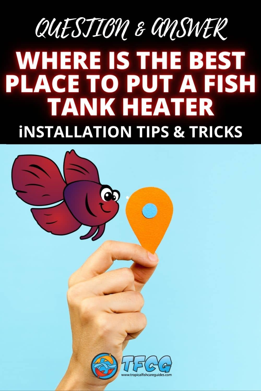 Where Is The Best Place To Put A Fish Tank Heater