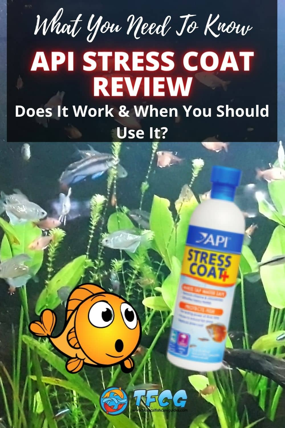 API Stress Coat Review - Does It Work & When You Should Use It