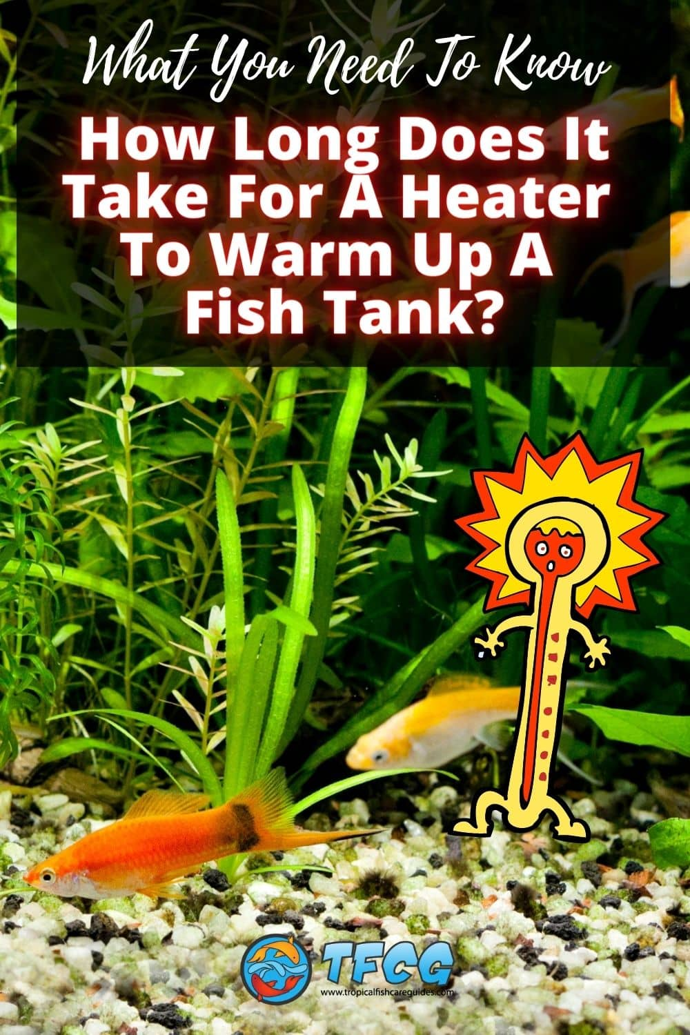 How Long Does It Take For A Heater To Warm Up A Fish Tank